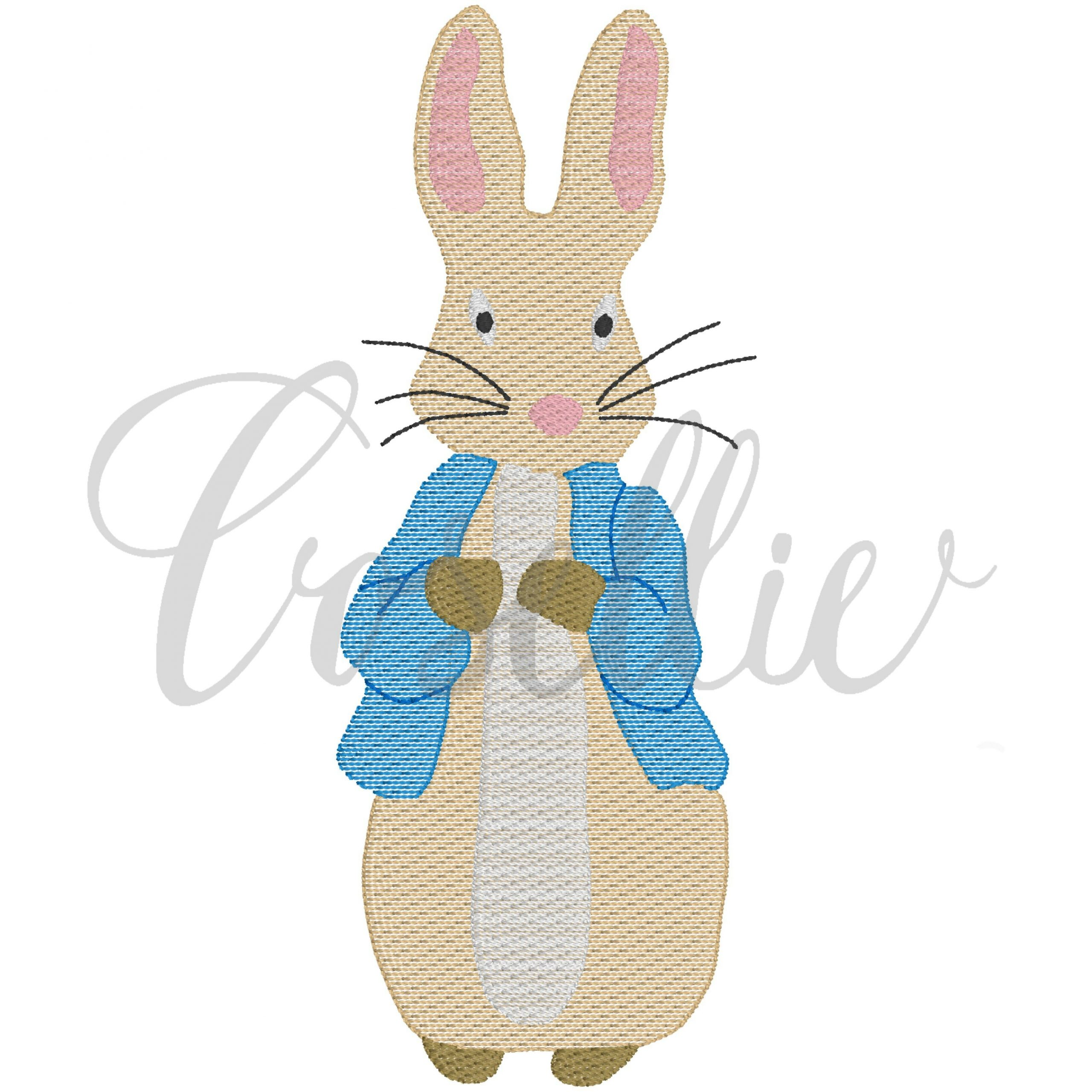MACHINE EMBROIDERY DESIGNS ON CD OR USB NEW STYLE PETER RABBIT DESIGNS
